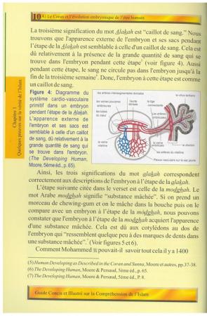 Guide Concis et illustré sur la Compréhension de l'Islam