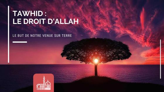 Le Tawhîd, le droit d'Allah